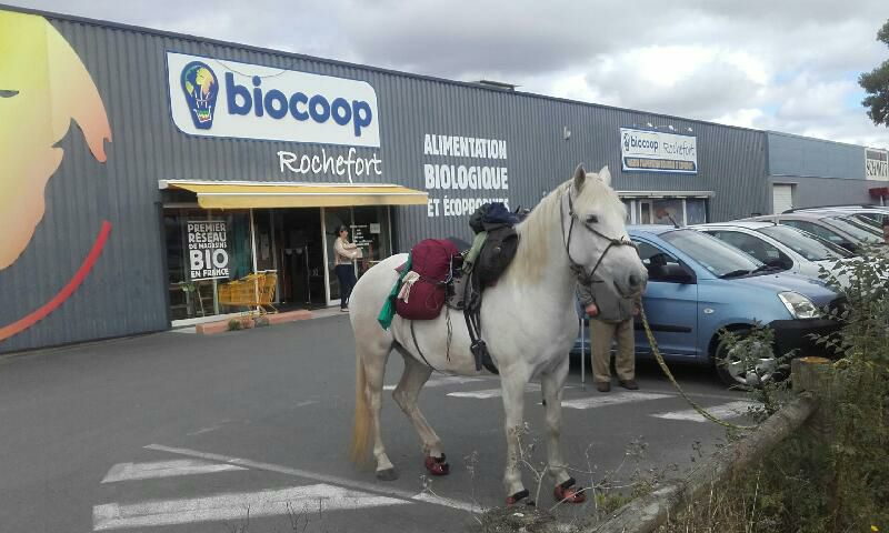 Vu sur le parking de Biocoop Rochefort !
